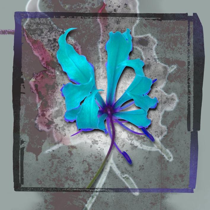 Arno Bauman Kunst Flower 11